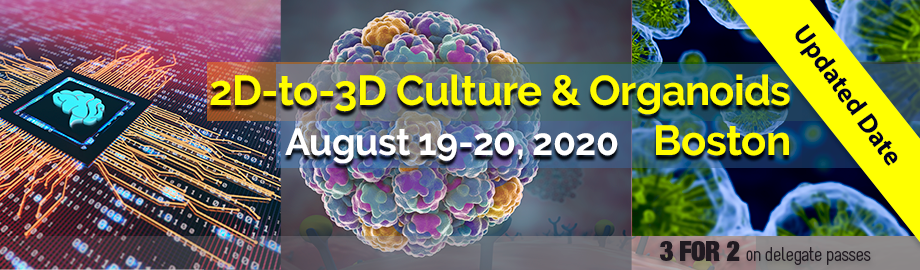 2D-to-3D Culture and Organoids 2020