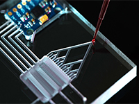 Lab-on-a-Chip and Microfluidics 2020