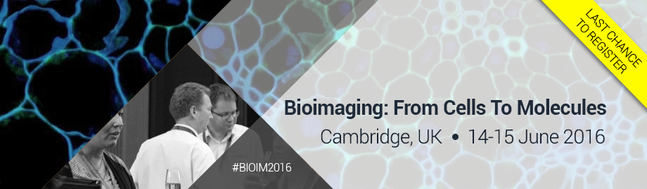 Bioimaging: From Cells To Molecules 2016