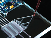 Lab-on-a-Chip and Microfluidics Europe 2021