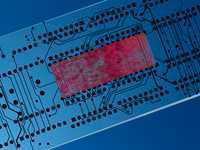 Microfluidics & Lab-on-a-Chip Asia 2021